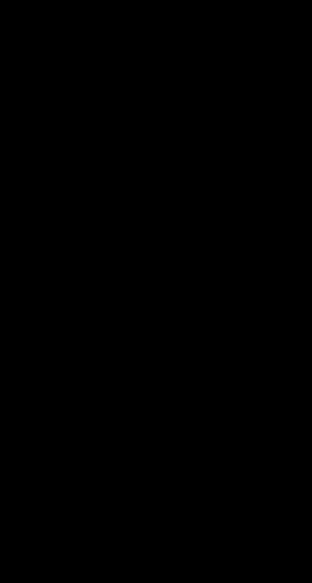 silhouette arbre équilibre